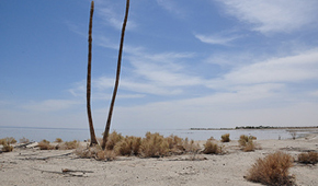 Clinton Health Matters Conference Discusses Private Sector Role in Salton Sea Restoration, Including Renewable Energy Industry