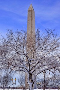 Washington Monument After the Snow Washington DC