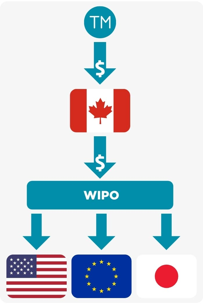 Image: A diagram showing Trademark dollars going to Canada and then to WIPO and then to individual countries