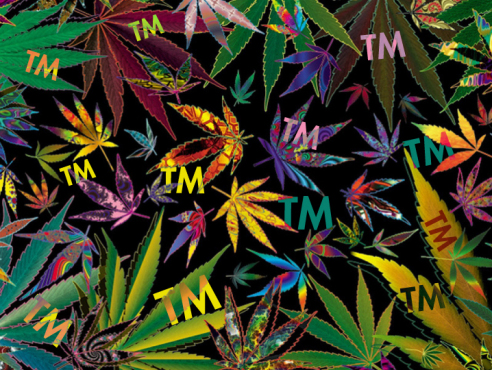 Pot leaves trademark image