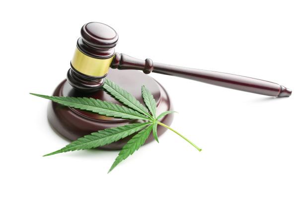 Cannabis leaf underneath a gavel
