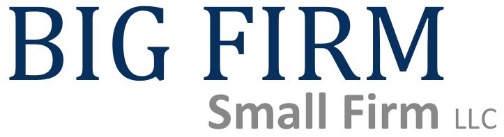 BIG FIRM Small Firm Merger sample logo