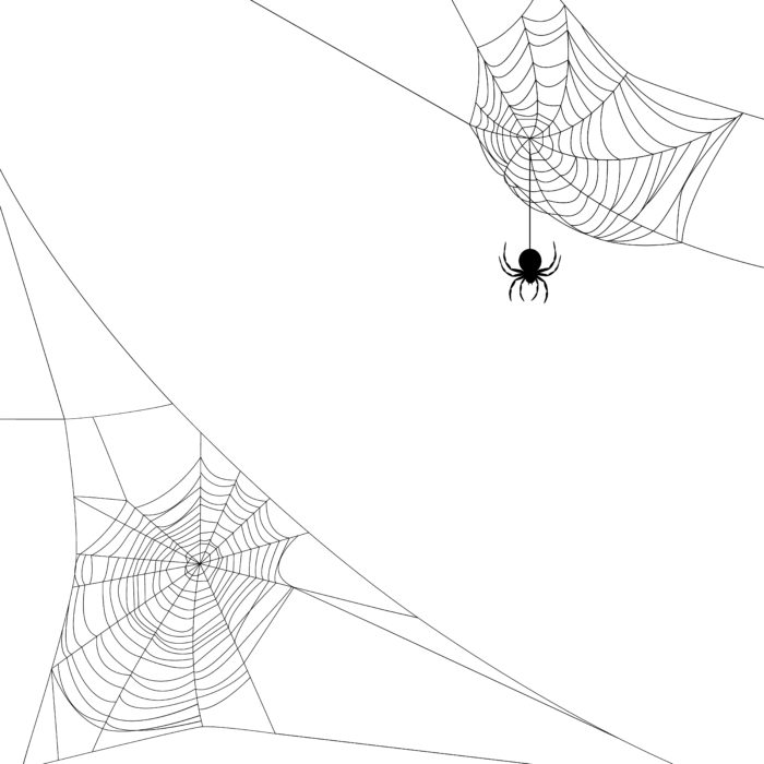 Background with two spider webs isolated on white
